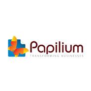 Papilium maakt gebruik van IT1 on site manager